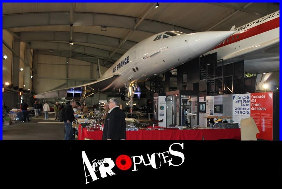 161023-aeropuces-0116